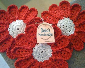 Red Dish Daisies