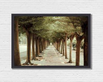 Green Road - Photo Art framing floater