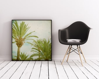 Palm Tree Print, Nature Photography, Retro Wall Art, Tropical Print - Palm Trees