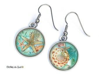 Earings, star of the sea, sea, ocean, steel hooks surgical ref.299