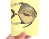 Angelfish Notebook, natur...