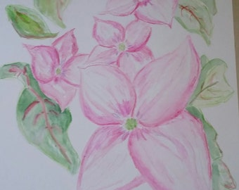 Lovely Pink Dogwood Rosy Teacups Blossoms Watercolor Print