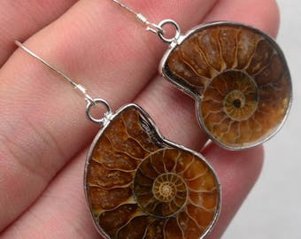 Honey Brown/ Ammonite/ Fossil / Gemstone/ 925 Sterling Silver Earrings/  Multi Color/ Ammonites   / Womans Fossil Earrings