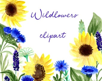 Wildflower Clipart Watercolor Flower Clipart Wildflower Png Sunflower Watercolor Clipart Elements Watercolor Floral Clipart Watercolor Png