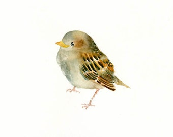 BABY SPARROW-7x5inch Print-Art Print-Bird Watercolor Print-Giclee Print-bird print