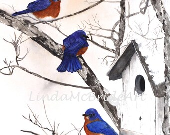 Bluebirds in Snow 3x3 Gift Enclosure Card with Envelope