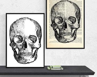 A3 Print, Anatomy Dictionary Art, Anatomy Art Gifts, Anatomy Art Prints, Dictionary Art Print, Anatomy Poster, Anatomy Print, Medical Prints