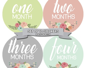 Baby Monthly Stickers, Baby Girl Monthly Stickers, Milestone Stickers, Baby Girl Month Sticker - Baby Girl, Girl, Baby Shower Gift 1105