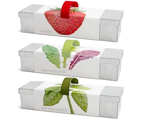 Window box garden kits indoor garden strawberries workwithnaturefo