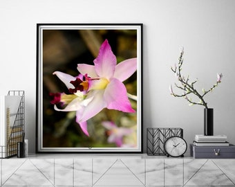 Mother's Day gift Magenta pink orchid flower,Moden home decor, Spa art calming wall art bedroom, boho style home, botanical prints on canvas