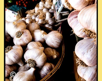 Kitchen Vegetable Photo, Picture of Garlic,Gift for Gardeners,Vegetable Print, Canvas, kitchen,Gift for her,Farmers Market,Garlic Photograph