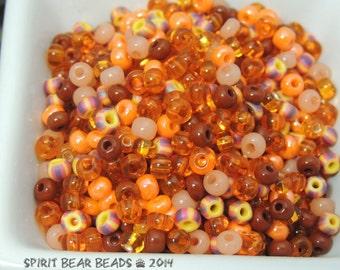 Orange U Phunny Mix Size 6 Seed Beads 50 grams
