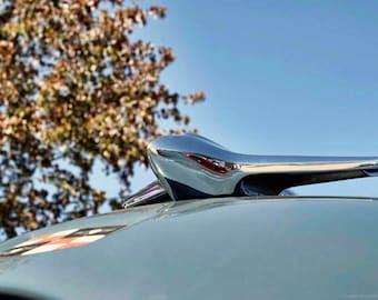 Classic Car Details Photo Art - Silver Chrome Plane Hood Ornament Photograph - Autumn Car Show Pictures - Blue Sky, Golden Leaves - Old Cars