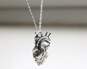 Anatomical Heart Necklace - Real Anatomy Pendant - Lifelike Heart Necklace - Science Necklace - Heart Charm