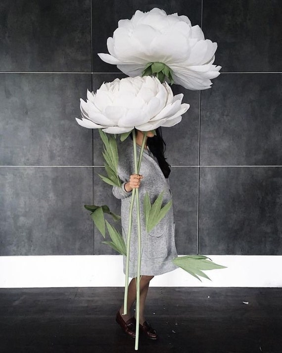 Oversized paper flowers paper peonies paper flowers with mightylinksfo