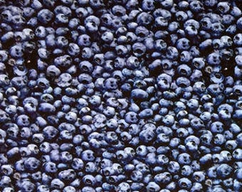 Photo Real Blueberries fabric