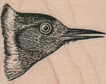 woodpecker head Birds   stamp   wood Mounted   rubber stamp    stamp number 17098