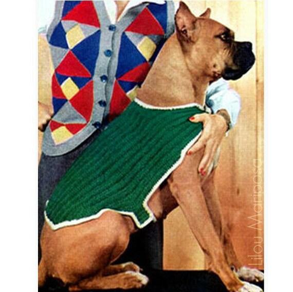 Patron pdf de tejido en aguja sueter para perro mascota