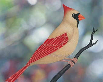 female northern cardinal - bokeh - signed art print 8X10 inches by Sarah Knight, scarlet red beige lady bird colorful forest green dots
