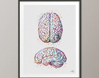 Brain Anatomy Human Brain Watercolor Print Medical Science Art Anatomical Art Neurology Doctor Gift Nurse Science Print Psychological-974