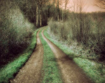 Forest photography, Landscape photography, Enchanted forest, Autumn Decor, Green Decor, Woodland decor