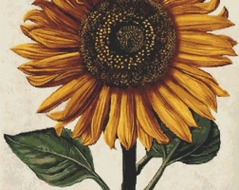 Floral Cross Stitch Chart, Sunflower with Background Cross Stitch Pattern PDF, Art Cross Stitch, Daniel Froesch, Embroidery Chart