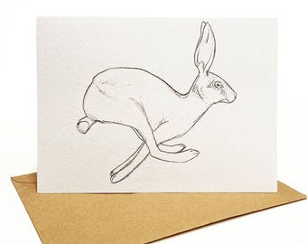 "5pk ""Hare & Bone"" Folded Cards"