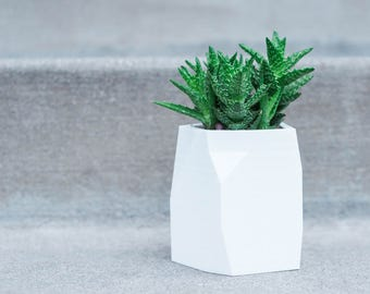 SUCCULENT PLANTER POT || Cactus Planter - Air Plant Holder - Geometric Planter - Modern Planter - Indoor Planter - Planter - Desk Planter