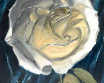 Rose, Shades of White