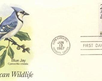 Blue Jay (F24 )