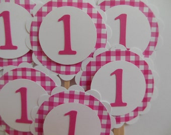 1st Birthday Cupcake Toppers - Bright Pink Gingham - Girl Birthday Party Decorations - Set of 6