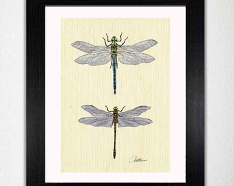 Libelle Wall Art Dragonfly Malerei Libelle Kunstwerk Libelle Illustration - 'Libellen auf Leinwand' eine Mixed-Media-Kombination