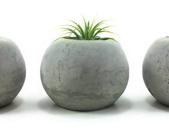 ORB Concrete Succulent/Air Plant Planters. (Set of 3) Natural Gray.    FREE SHIPPING! Ready To Ship!