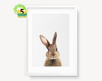 Nursery Decor, Nursery Wall Art, Bunny Print, Animal Nursery Prints, Nursery Animal Print, Bunny Print, Animal Print For Nursery, Rabbit