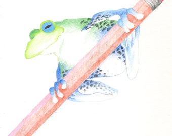 Pencil Frog Green/Red