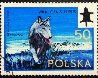 Gray wolf, Wilk, Canis Lupus -Handmade Framed Postage Stamp Art 22113AM
