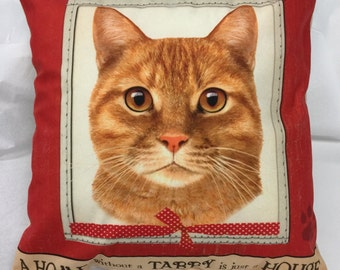 Tabby Orange Cat Pillow