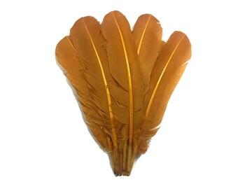Plumes, en gros 1/4 livre - Light Brown Turquie tours secondaires Quill gros plumes des ailes (en vrac): 4186