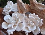Sola Flowers - Sola Gardenias 14 pieces - Sola Flower- Wedding Flowers- Wedding Decorations