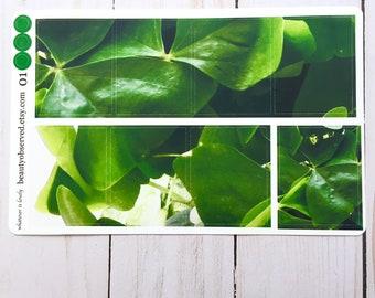 shamrock planner stickers | green shamrock photo stickers | full box planner stickers |  | vinyl matte stickers | St. Patrick's Day stickers