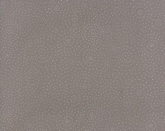 Catnip Circle Time in Grey,  Gingiber, 100% Cotton, Moda Fabrics, 48236 13