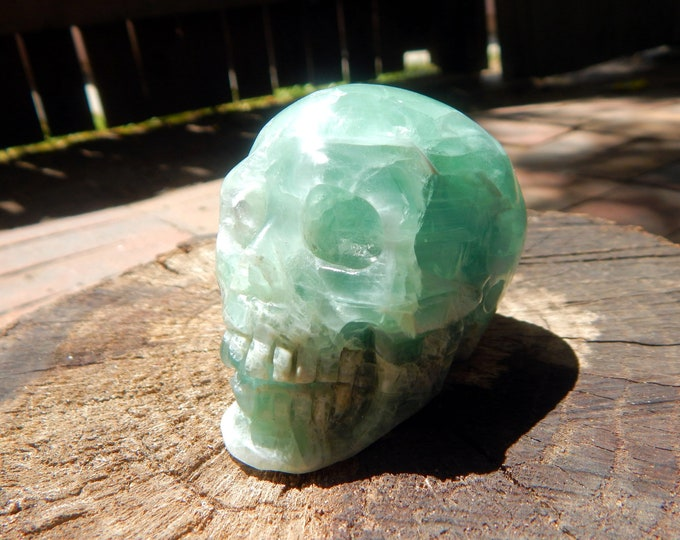 Hand Carved Fluorite SKULL Memento Mori realistic self standing natural green Fluorite gemstone 11.1 oz - Reiki Wicca Pagan Geology Occult