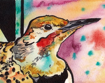 Alabama State Bird Art - Print of Original Watercolor Painting of the Northern Flicker - Bird Wall Art by Jen Tracy - Nursery Art with Birds
