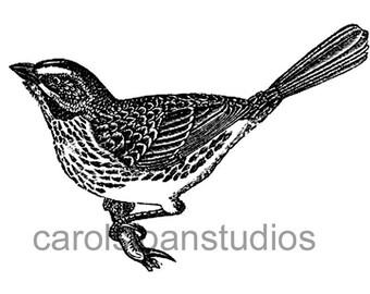 Thermofax Screen Vintage Bird
