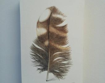 Plume de chouette original, peinture à l'aquarelle, décor moderne, décor à la maison, décoration hippie, décor naturel, croquis de plume, art de la nature