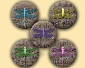 Pastel Dragonfly Vintage Print Burlap Circles Collage