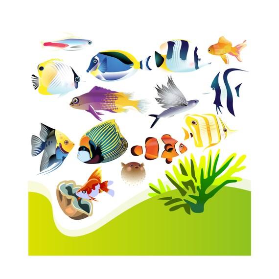 aquarium clip art aquarium clipart clip art aquarium clipart rh etsystudio com aquarius clip art aquarium clipart black and white