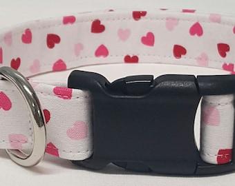Dog Collar, Spring Love, happy valentines day, valentines day dog collar, valentine dog collar, valentine collar, be mine, heart dog collar
