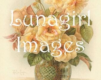 40 ROSES VINTAGE images DOWNLOAD, yellow white peach flowers, Victorian art postcards floral cards scraps, Klein printables Digital Ephemera