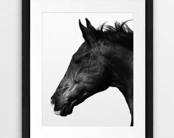 Horse Print, Horse Photo, Black And White Photography, Black Horse, Icelandic Horse, Printable Art, Modern, Minimal Photo, Instant Download